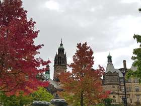 Sheffield Town Hall behind autumn trees
