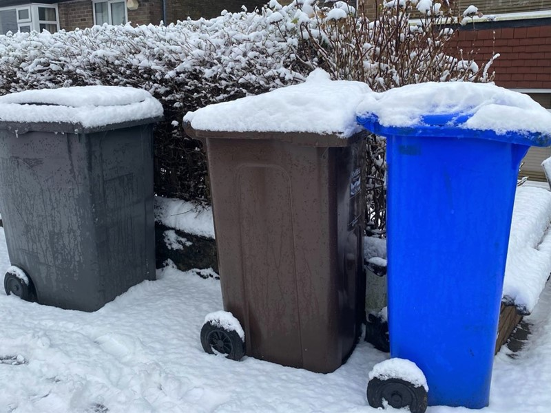 snow topped bins