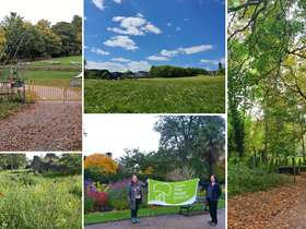 Collage of green spaces in Sheffield